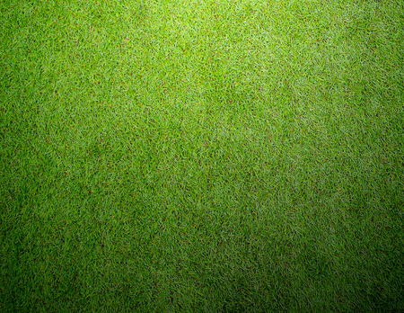 Voetbal voetbal grasveld Stockfoto