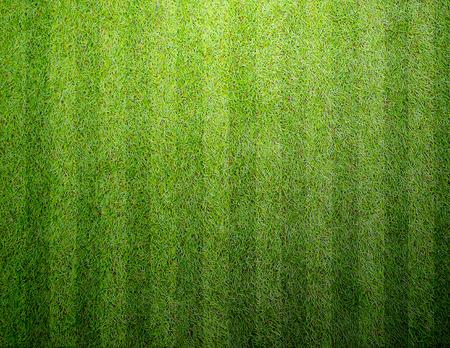 Soccer football grass field
