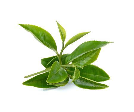 Groene thee blaadjes geïsoleerd op witte achtergrond Stockfoto - 43967977