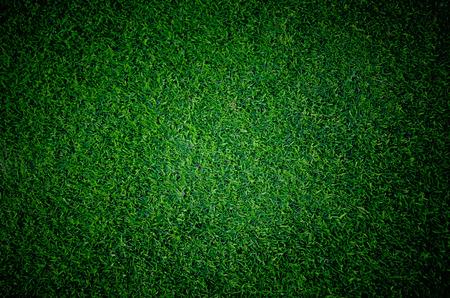 Fußballfußballrasenplatz Standard-Bild - 44470082