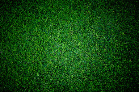 background color: Soccer football grass field