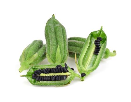 Black Sesame Seeds isolated on white background. Standard-Bild