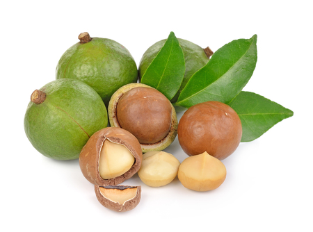 macadamia nuts isolated on white background Banque d'images