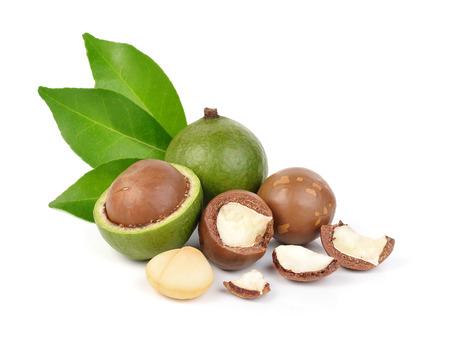 Macadamia-Nüsse auf weißem Hintergrund Standard-Bild - 50764705