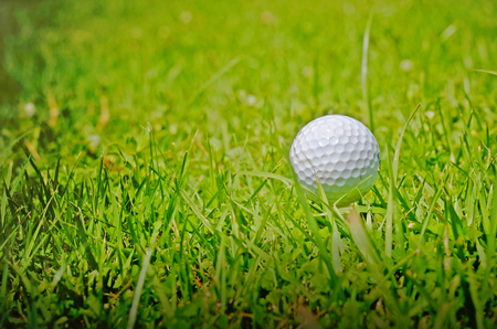 golf ball on tee: Golf ball