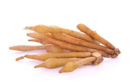 Fingerroot, Kaempfer, Boesenbergia on white background