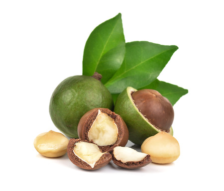 Macadamia-Nüsse auf weißem Hintergrund Standard-Bild - 61371367