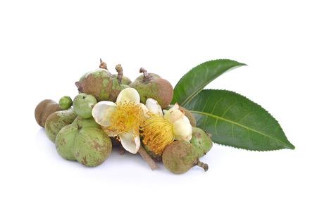 black seed: tea seeds ,Flowers, leaves on white background