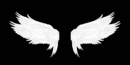 weiße Flügel des Vogels auf schwarzem Hintergrund