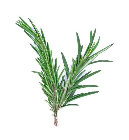 Rosemary isolated on white background, Top view. Standard-Bild