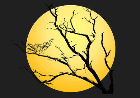 Yellow moon halloween night background photo