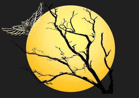 Yellow moon halloween night background photo