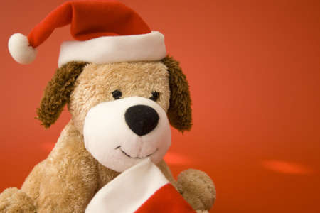 christmas puppy doll with santa hat on red background photo