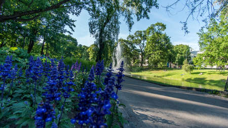 romantic places: Beautiful city park with small canal in Riga