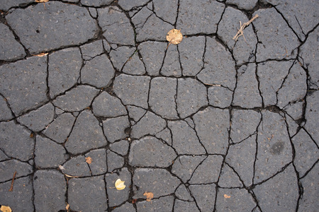Old cracked asphalt on the road. There are two yellow leaves on the surface. Background