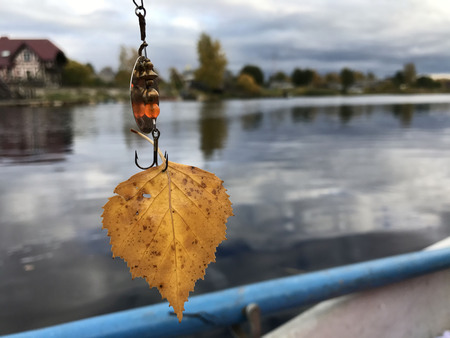 A yellow autumn leaf hangs on a fishing hook. In the background, a river is visible.