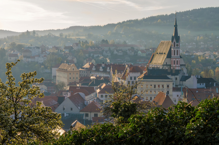 The landscape of Cesky Krumlov on a spring morning.  Flowering plants are located in the foreground.