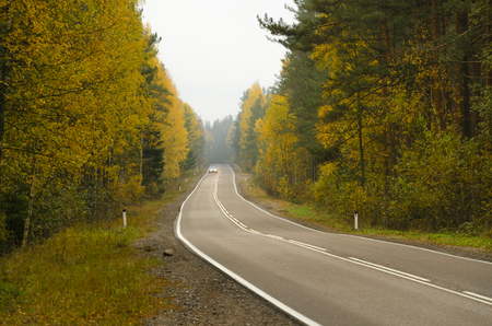 View on the perspective of the road with asphalt pavement. The road passes through the autumn forest. Tree leaves partially yellowed. In the distance, the headlights of an approaching car are visible. Background.