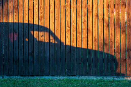 A wooden fence made of brown planks is illuminated by the evening sun. There is a shadow from the car on the fence and a strip of green grass at the bottom. Background. Stock Photo