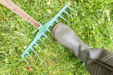 A man's leg in a green rubber boot steps on a plastic rake. There is a green lawn with mown grass. Background.