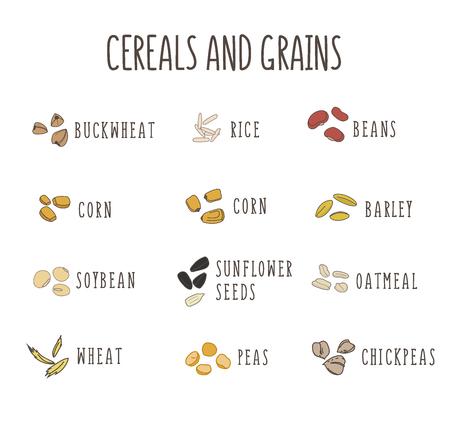 健康食品、生の食品、ベジタリアンのためのベクトルロゴ要素のセット。穀物と穀物。豆、トウモロコシ、オートミール、米、大豆豆
