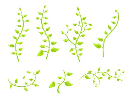 klimop twijgen met bladeren op een witte achtergrond vector Stock Illustratie