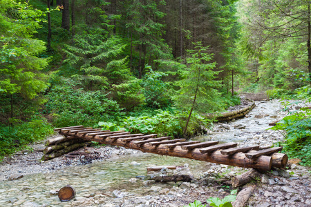 wooden bridge over the river in the spruce forest