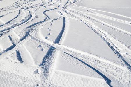 freeride tracks in the fresh snow on a clear day photo