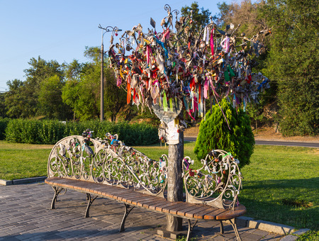 wedding customs: Original wrought iron bench with wooden seat and  Tree of wishes  ( Tree of happiness, Tree honeymooners,Wedding tree) with colorful ribbons and locks in  park . Bright sunny day. Wedding rituals and customs.
