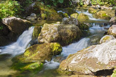 Mountain river flowing among mossy stones in the forest. Cascade waterfalls.