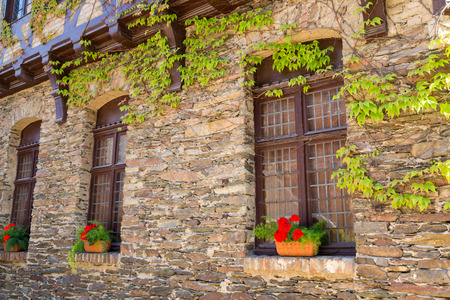 twined: Old stone facade of house twined wild grapes. Windows decorated with red flowers in ceramic pots.