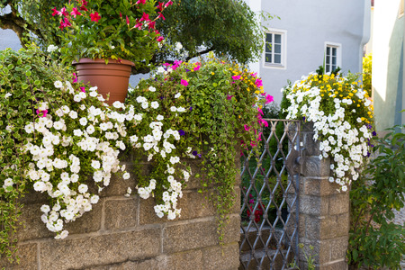 wicket gate: stone wall with  wrought iron gate near the house decorated with colorful flowers