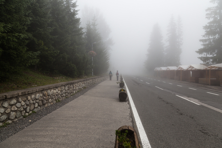 smother: Foggy day in coniferous forest. Two women - hikers walk on the concrete road. trbsk Pleso. Slovakia.