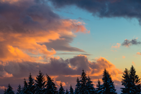 snow covered forest: Winter snow covered forest on the background of dramatic orange sunset. Clouds illuminated by the sun.