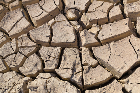 Gray cracked  ground closeup.  surface of dried earth  for  textured background. soil detail Stock Photo