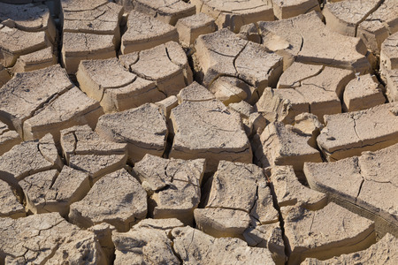 depletion: Gray cracked  ground closeup.  surface of dried earth  for  textured background. soil detail Stock Photo