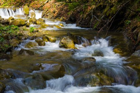 Fast mountain river  flowing among mossy stones and boulders in green forest. Carpathians, Ukraine
