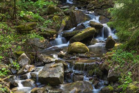 Fast Mountain River fließt unter moosigen Steinen und Felsbrocken im grünen Wald. Karpaten, Ukraine Standard-Bild