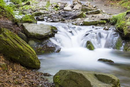 enviroment: Mountain stream flowing among the mossy stones. Carpathians, Ukraine