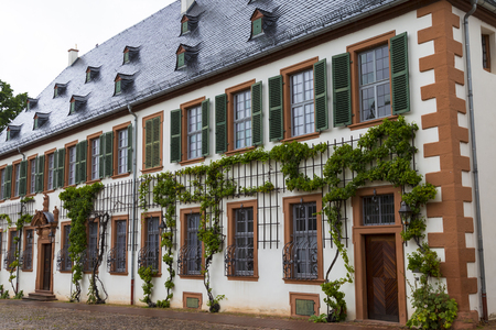 Ancient monastery Seligenstadt , Benedictine abbey:  beautiful building, vine-covered, close-up. Germany. Famous tourist destination Stock Photo
