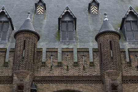 Binnenhof Palace, Dutch Parliament, The Hague, Netherlands. Exterior details close-up : Ancient stone roof with windows and turrets