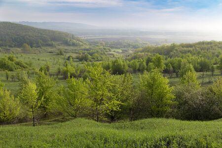 Summer rural landscape. Beautiful colorful hills covered forest in fog. Ukrainian nature. Surroundings of Opishnya village, Poltava region, Ukraine