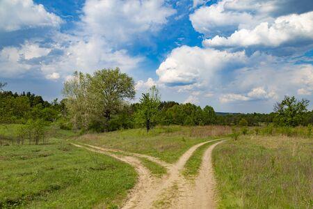 Landscape with two dirt rural roads among the green field. Summer ukrainian nature. Surroundings of Opishnya village, Poltava region, Ukraine Standard-Bild