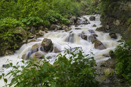 Fast mountain river flowing among mossy stones and boulders in  gorge in  green forest. River Prut. Carpathian mountains. Ukraine