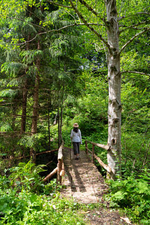 Summer holidays in the Carpathian mountains. Ukraine. Woman - hiker on wooden footbridge in green coniferous forest. Tourism, active lifestyle Standard-Bild