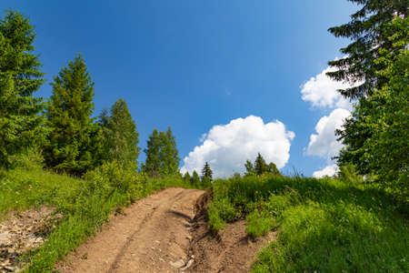 Mountain summer landscape. Road uphill. Trail among the trees against the background of cloudy sky. View on Makovytsia mountain, Yaremche area. Carpathians. Ukraine. Standard-Bild