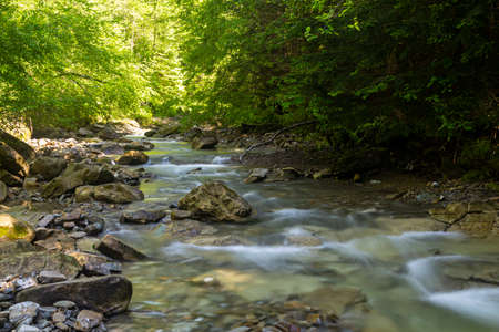 Fast mountain river flow among green forest. Beautiful nature of Carpathians. Ukraine. Europe. Summer mountain landscape. Reklamní fotografie
