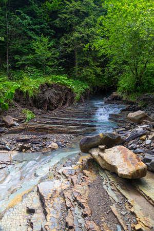 Beautiful small mountain river among the green forest in Carpathian Flysch Belt. Carpathians. Ukraine. Summer mountain landscape.