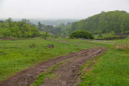Landscape with dirt rural road among the green hills at countryside. Summer ukrainian nature. Surroundings of Opishnya village, Poltava region, Ukraine