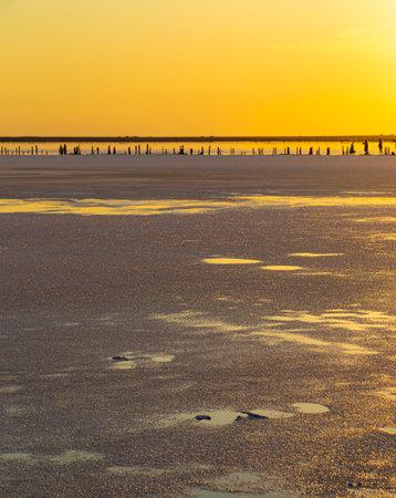 Golden sunset over Syvash lake. Salt lake with healing mud in the rays of the setting sun. Beautiful landscape of Arabat Spit. Sea of Azov. Ukraine.